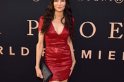 Famke Janssen Sequin Dress