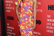 Renee Elise Goldsberry One Shoulder Dress
