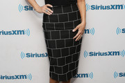 Julia Louis-Dreyfus Pencil Skirt