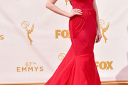 Laura Prepon Mermaid Gown