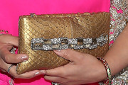 Shanu SP Hinduja Metallic Clutch