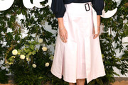 Gwyneth Paltrow Full Skirt